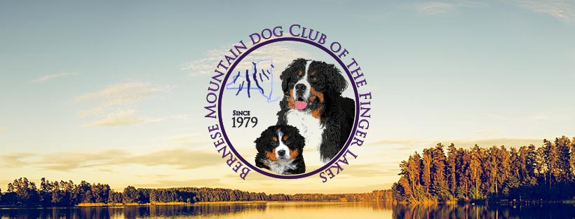 Bernese Mountain Dog Club Home